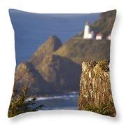 Oregon, United States Of America Heceta Throw Pillow