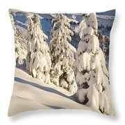 Oregon, United States Of America Snow Throw Pillow by Craig Tuttle