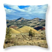 Oregons Painted Hills Throw Pillow