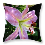 Oriental Lily Named Tom Pouce Throw Pillow