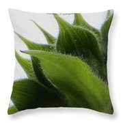 Ornamental Calyx Throw Pillow