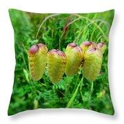 Ornamental Grasses Throw Pillow