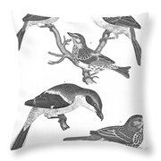 Ornithology, 19th Century Throw Pillow