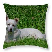 Orvis 0360 Throw Pillow