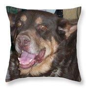 Oso Perro  Throw Pillow