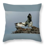 Osprey 2 Throw Pillow