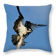 Osprey And Rainbow Trout Throw Pillow