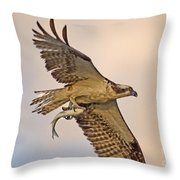 Osprey Catches Big Fish Throw Pillow