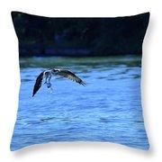 Osprey Environmentalist Throw Pillow