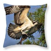 Osprey Flight Throw Pillow