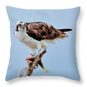 Osprey In The Morning Throw Pillow