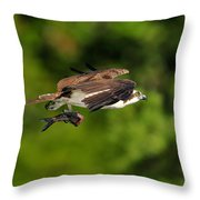 Osprey Inflight At Blue Cypress Lake Throw Pillow