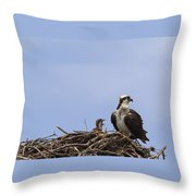 Osprey Mother And Chick Throw Pillow