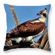 Osprey On A Windy Morning Throw Pillow