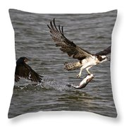 Osprey On The Run Throw Pillow