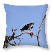 Osprey With Catch I Throw Pillow