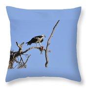 Osprey With Catch II Throw Pillow