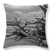 Ossabaw Island 1 Throw Pillow