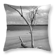 Ossabaw Island 2 Throw Pillow