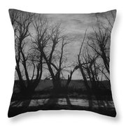 Other Side Of The Wind Throw Pillow