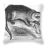 Otter, 1873 Throw Pillow