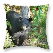 Our Little Shadow II Throw Pillow