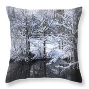 Our Pond In The Snow Throw Pillow