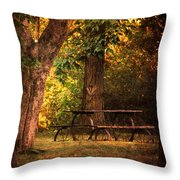 Our Special Place Throw Pillow
