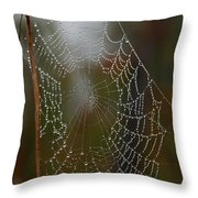 Out In The Morning Dew Throw Pillow