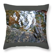 Out Of Water Throw Pillow