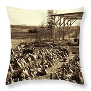 Out Of Your Gourd Throw Pillow