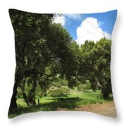 Out On A Country Road Throw Pillow