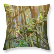 Out On The Pond Throw Pillow