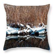 Outcrop Throw Pillow