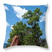 Outcropping Throw Pillow
