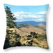 Vista 14 Throw Pillow