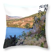 Vista 16 Throw Pillow