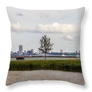 Outside Of The Inside Throw Pillow