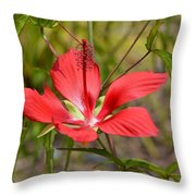 Outstandishly Throw Pillow