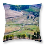 Over The Green Valley Throw Pillow