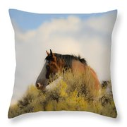 Over The Hill Pinto Throw Pillow