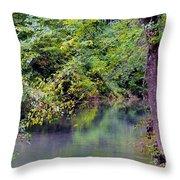Overcast Reflections At Buck Creek Throw Pillow