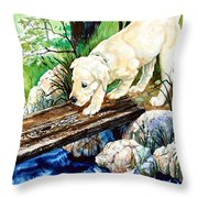 Overcoming Fear Throw Pillow