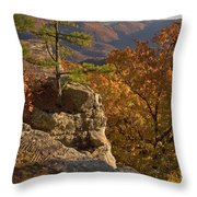 Overlook At Cecil Hollow Throw Pillow