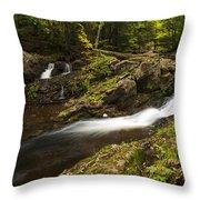 Overlook Falls 1 Throw Pillow