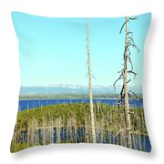 Overlooking The West Throw Pillow