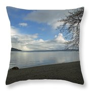 Owen Beach Throw Pillow