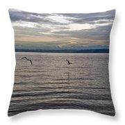 Owen Beach Throw Pillow