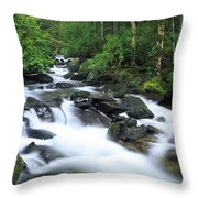 Owengarriff River, Killarney National Throw Pillow