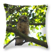 Owl In Central Park Throw Pillow